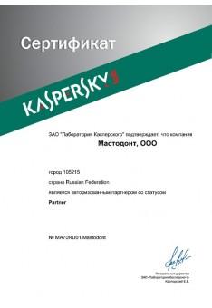 Kaspersky lab - авторизованный партнер со статусом Partner