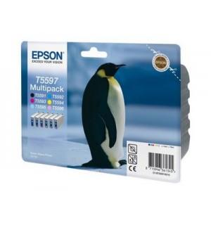 T559740 Набор картриджей для Epson Stylus Photo RX700 (Bk+C+M+Y+Lc+Lm)