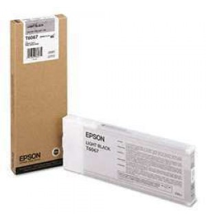 T6067 / T606700 Картридж для Epson Stylus Pro 4800/ 4880, Light-Black (220мл.) (C13T606700)